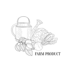 Farm Vegetables Hand Drawn Realistic Sketch vector
