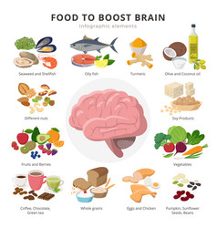 Healthy food for brains infographic elements in vector