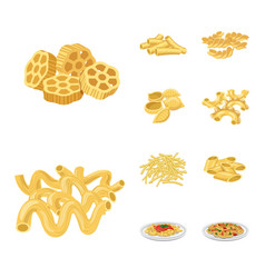 isolated object of pasta and carbohydrate sign vector image