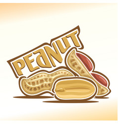 Logo for peanut nuts vector