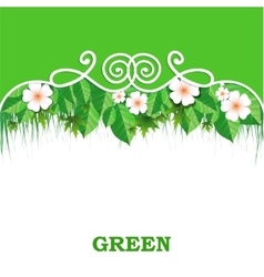 Spring banner with green grass vector image