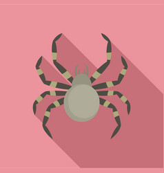 tarantum spider icon flat style vector image