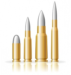 set of bullets vector image vector image