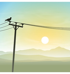 Bird on Telephone Lines vector image vector image