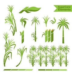 Sugar cane decoration elements vector image