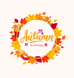 autumn is coming banner with frame from leaves vector image