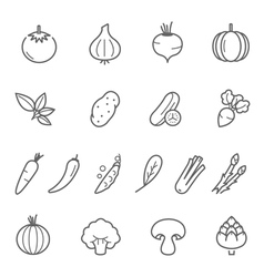 Lines icon set - vegetable vector image
