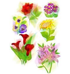 set flowers on white vector image