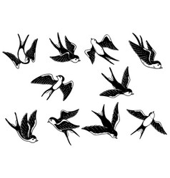 Set of hand drawn swallow on white background vector