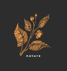 tea sprout symbol sketch bush leaf flower vector image