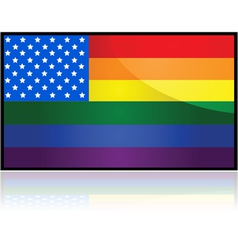 USA rainbow flag vector image