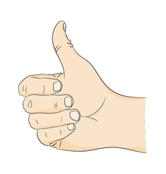Thumbs up hand gesture approval Picture a mans vector image
