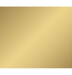 Abstract metal gold hexagon with cells vector