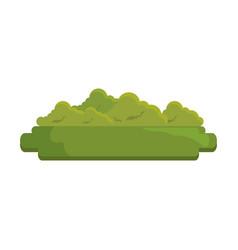 Green bush icon vector