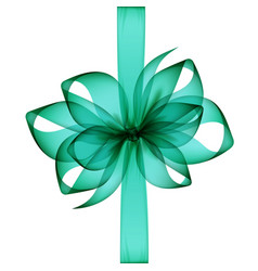 green transparent bow and ribbon close up vector image