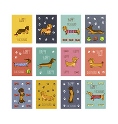 Set of dog dachshund vector