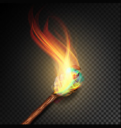 torch with flame realistic fire realistic fire vector image