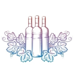 Wine bottle and grape leaves vector