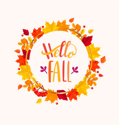 hello fall lettering in frame from autumn leaves vector image