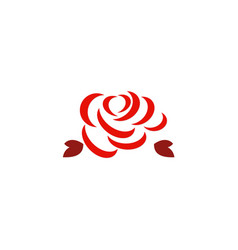 red rose abstract logo vector image