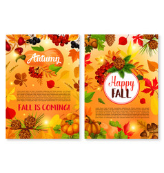autumn leaf fall season greeting cards vector image