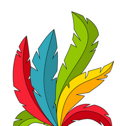 colorful feathers on white background vector image vector image