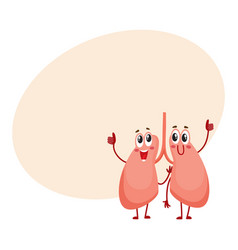 pair of cute and funny smiling human lung vector image