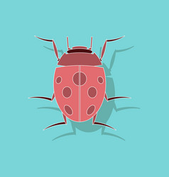 Paper sticker on background of ladybug vector