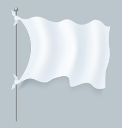realistic textile flag isolated vector image