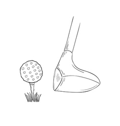 sketch of the golf ball and golf club vector image