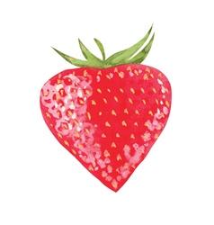 watercolor strawberry vector image