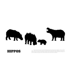 black silhouette hippopotamus family vector image