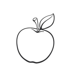 doodle apple with stem vector image
