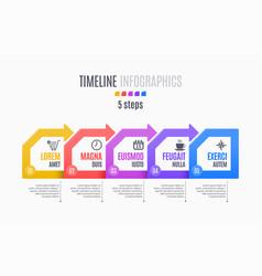 five steps infographic timeline presentation vector image