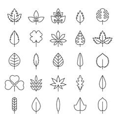 Leaf flora linear style black contour vector