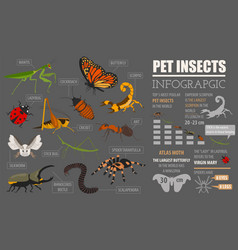 Pet insects breeds icon set flat style isolated vector