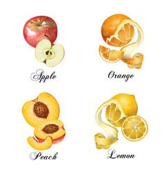 Realistic fruits set vector