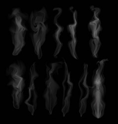 set of transparent smoke on dark background vector image