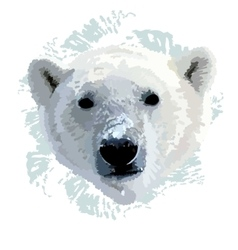 The head of a polar bear vector