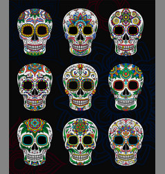 mexican sugar skulls with floral pattern set day vector image