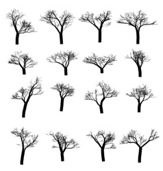 Winter tree set Dry with fallen leaves Dead vector image