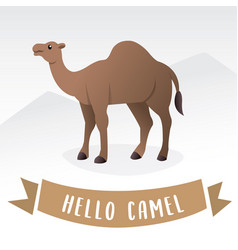 camel cartoon vector image