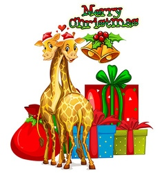 Christmas card template with giraffes and presents vector