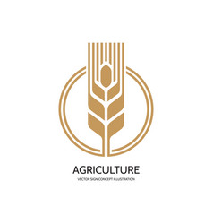 ear wheat - logo template creative vector image