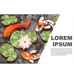 koi carp swimming in a pond with lily lotus vector image