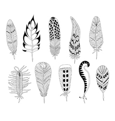 Black and white feathers vector image vector image