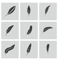 black feather icons set vector image vector image
