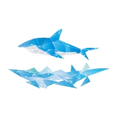 Abstract polygon shark isolated design blue vector