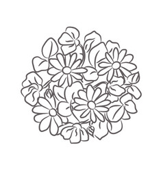 Chamomile floral rosette isolated vector