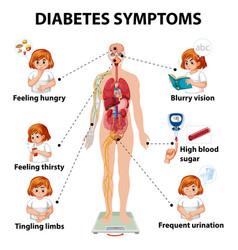 Diabetes symptoms information infographic vector